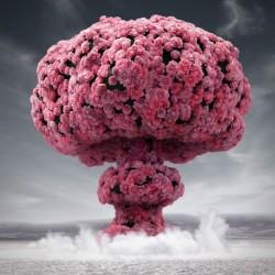 Парфюм D112 Цветна Експлозия Ексклузив