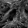 BLACK OUD – ароматно масло